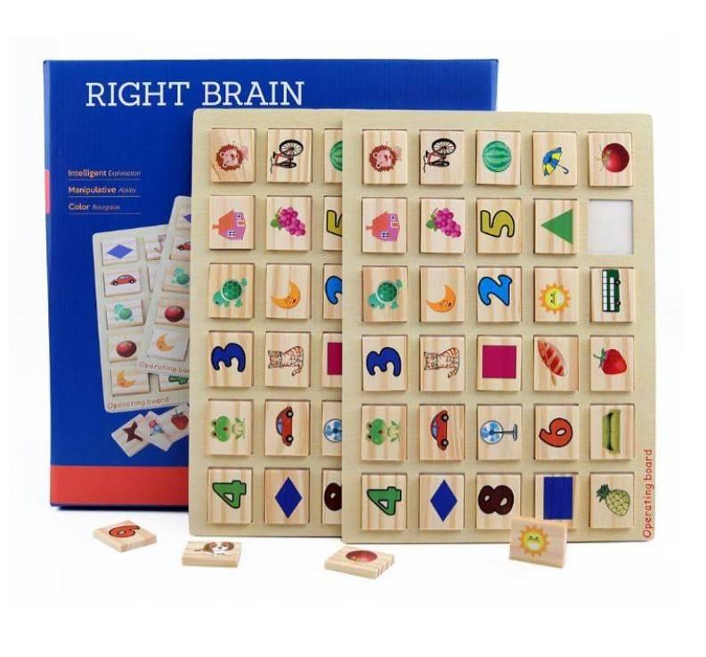 Shichida Children Right Brain Memory