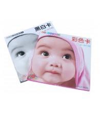Baby Vision Stimulation Colour Flash Card