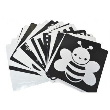 Baby Vision Stimulation Black and White Flash Card