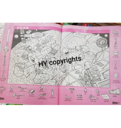 Hidden Picture Book Set