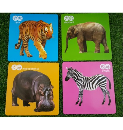 Early Learning Baby Cognition Flash Cards 19x19cm